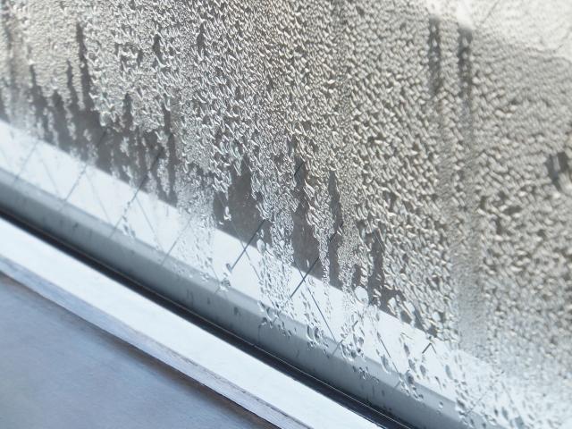 部屋の寒さ対策をしたい! 窓にはシートとカーテンどちらが良い?