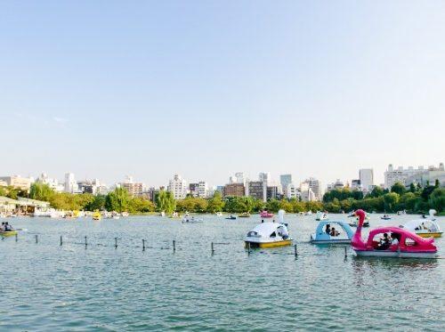 上野公園不忍池の観光で、押さえるべき見どころと人気のボート乗り場