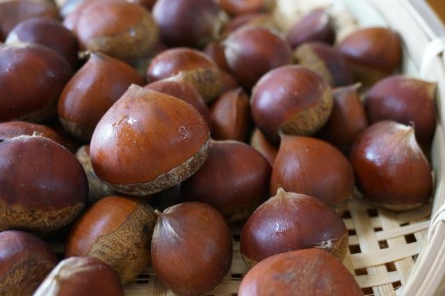 栗で作る3大保存食レシピ。渋皮煮&甘露煮&ペーストの作り方